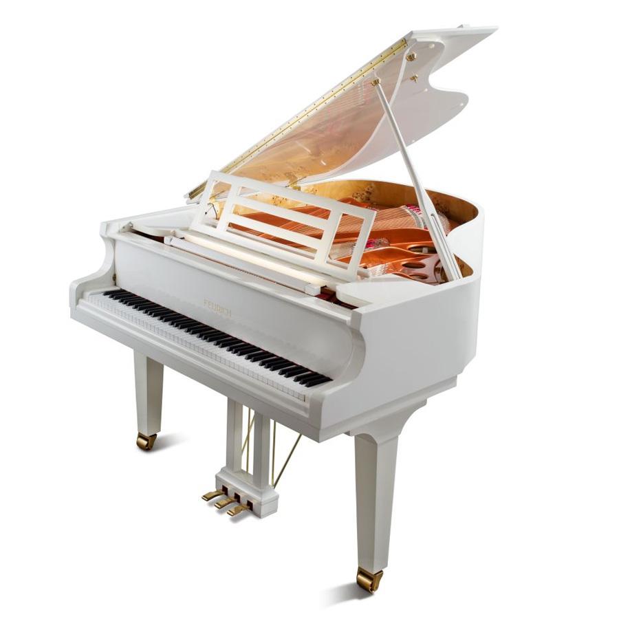 feurich fl gel mod 179 dynamic ii kaufen klavierhaus alexander pekarek. Black Bedroom Furniture Sets. Home Design Ideas
